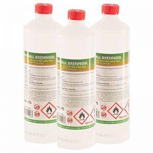 15 x 1 L bioéthanol en gel - FRAIS DE PORT OFFERT - en bouteilles d'1L de la marque Höfer Chemie image 0 produit