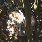 abri pour ranger le bois de chauffage TOP 13 image 3 produit