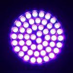 LOFTEK 51 LED Lampe Torche UV de Poche Flashlight Blacklight Lumière Ultra Violet 395nm Détecteur Anti Punaise de Lit 3 Piles AA Garantie de 6 Mois de la marque Loftek image 2 produit