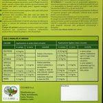 MICOSAT F WP Onglet de champignons mycorhizes symbiotes d'inoculum dans une boîte de 1 kg de la marque CCS AOSTA image 1 produit