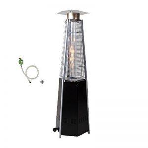 PROWELTEK Parasol Chauffant Flamme Pyramide 12.5 KW Octogonal Chaleur Instantanée Connectique gaz et Détendeur de la marque PROWELTEK image 0 produit